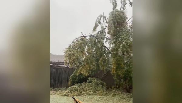 Buz fırtınası ABD'deki Oklahoma ve Teksas eyaletlerini felç etti (DHA)
