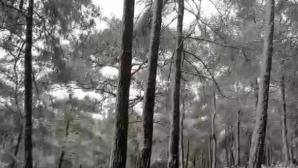 KKTC'ye mevsimin ilk karı yağdı (DHA)