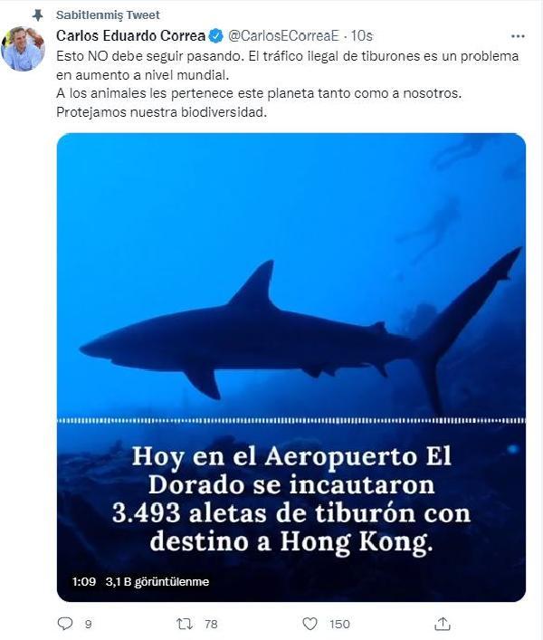 Kolombiya'da 3 bin 493 köpekbalığı yüzgecine el konuldu (DHA)
